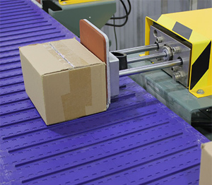 conveyor diverter system